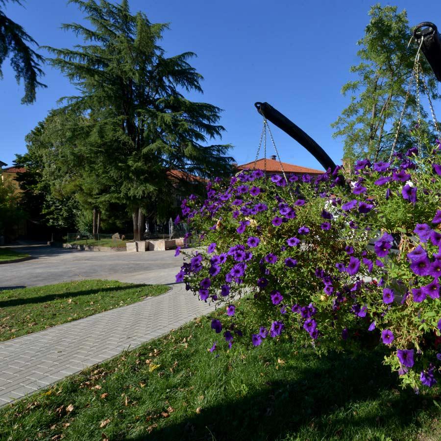 Villa Serena | casa di riposo immersa nel verde vicino a torino