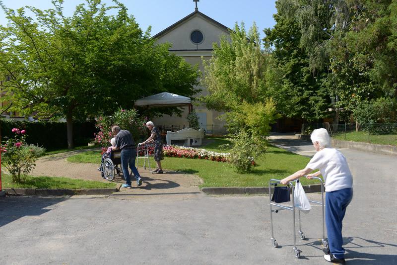 Camminare nel verde come terapia per gli anziani