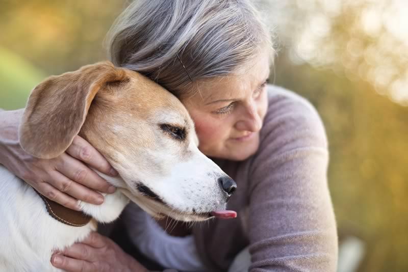 Ansia e depressione dell'anziano: un cane per sconfiggerla