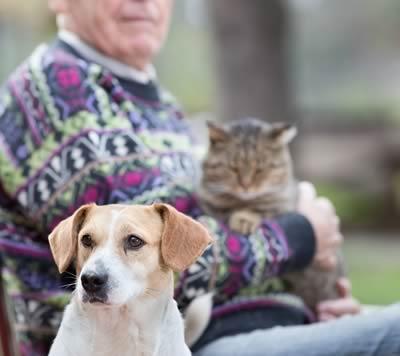 La Pet Therapy dà una zampa alla solitudine