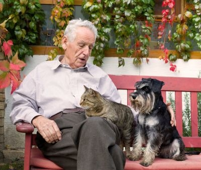 Pet Therapy come attività utile per gli anziani