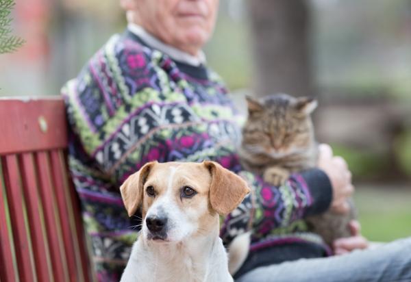 Pet Therapy in casa di riposo