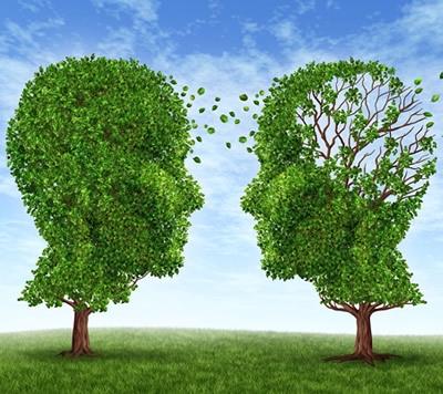 Alzheimer, la ricerca continua a fare passi in avanti: il meccanismo all'origine della malattia